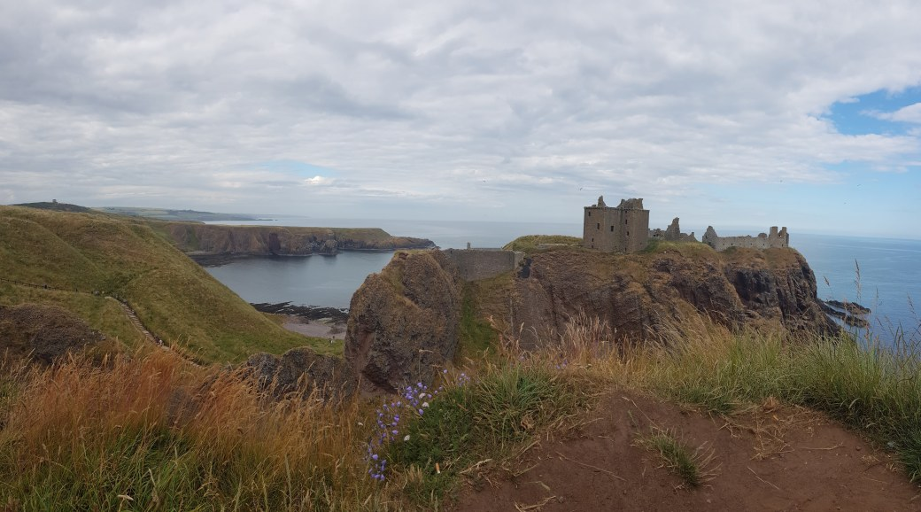 Dunnottar Castle & harebells